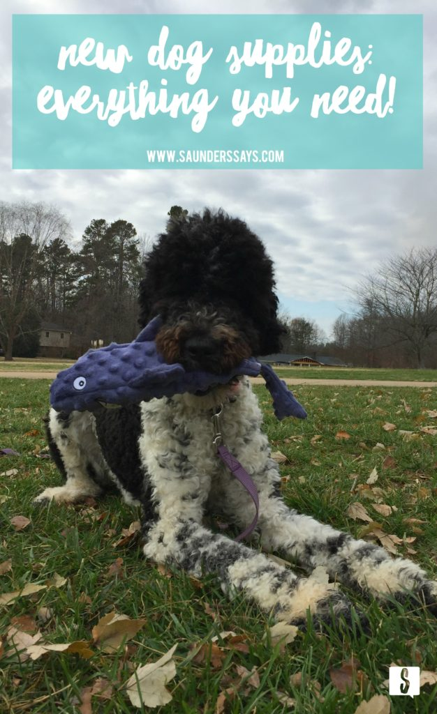 "I bet you're thinking ""what do I need for a new puppy dog?"" I've put together a comprehensive list of all the supplies you need to bring a new dog home! Read through this list for the 33 items I recommend! www.saunderssays.com"
